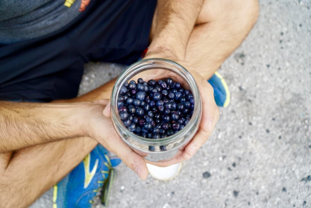 6-Bluberries-at-the-roadside.jpg